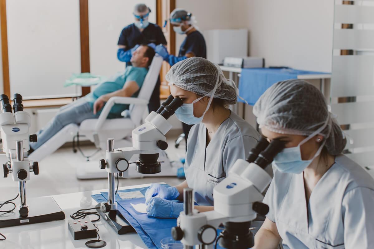 clinica trasplant par